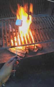 toasting-marshmallow