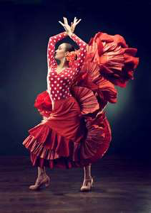 flamenco performance movie poster