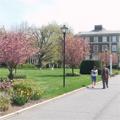 Adelphi University Campus