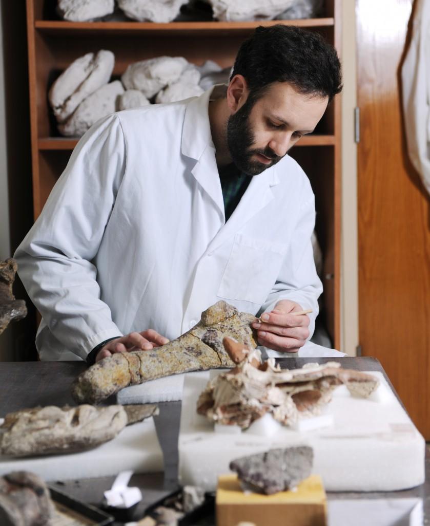 Michael D'Emic Biology Paleontology