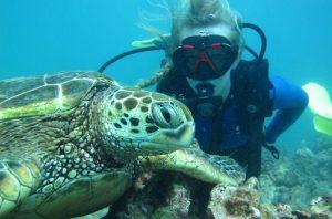 Scuba Diver with Turtle
